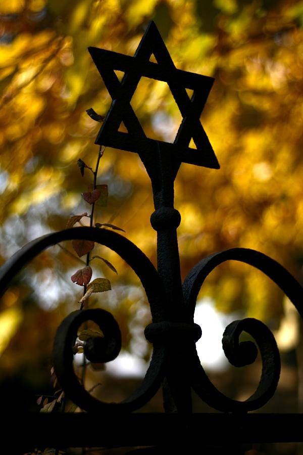 Jewish Cemetery Oradea photo 30